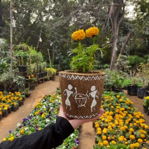 Cow dung planters with warli art by dharamachakra
